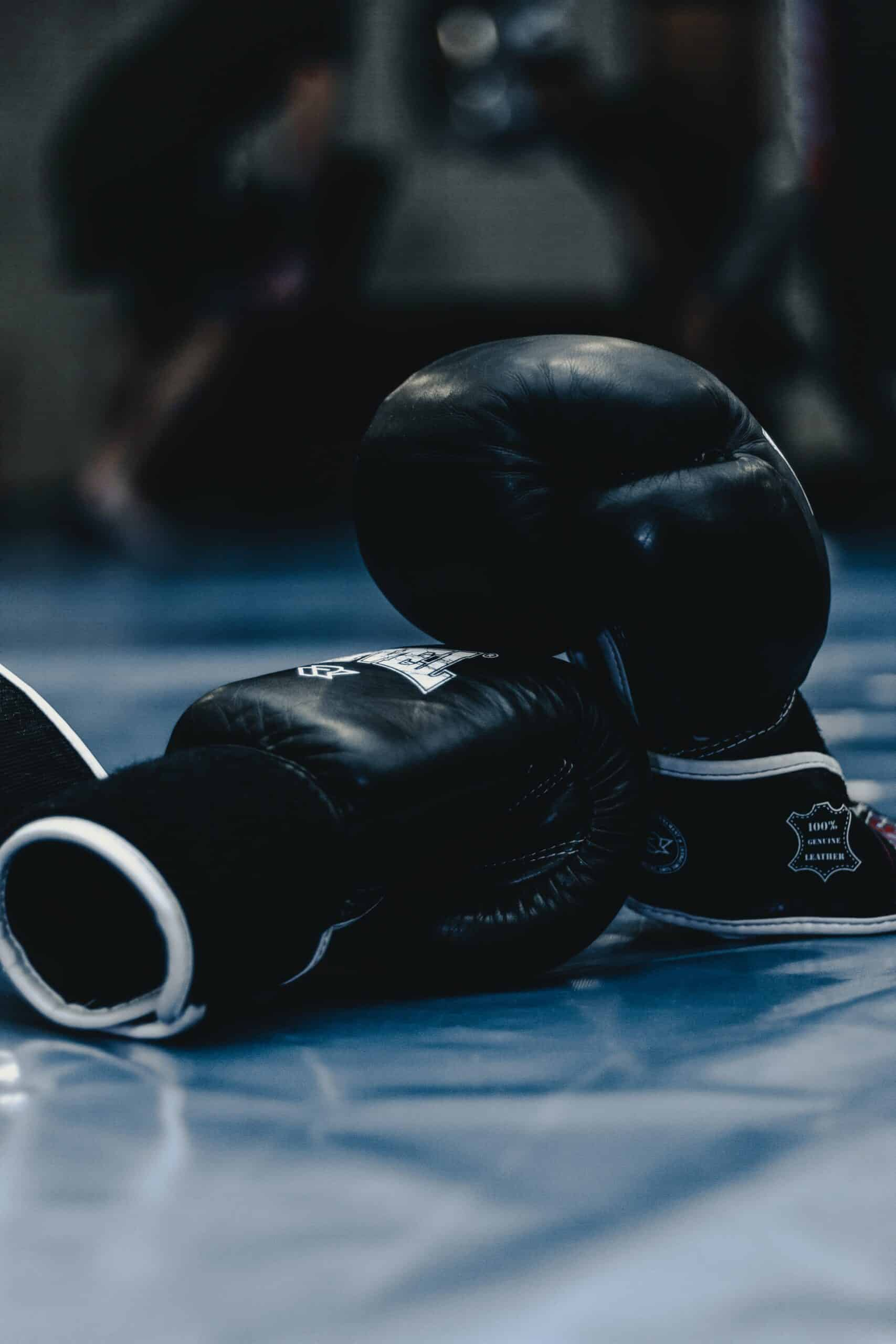 digital marketing for Boxing gyms