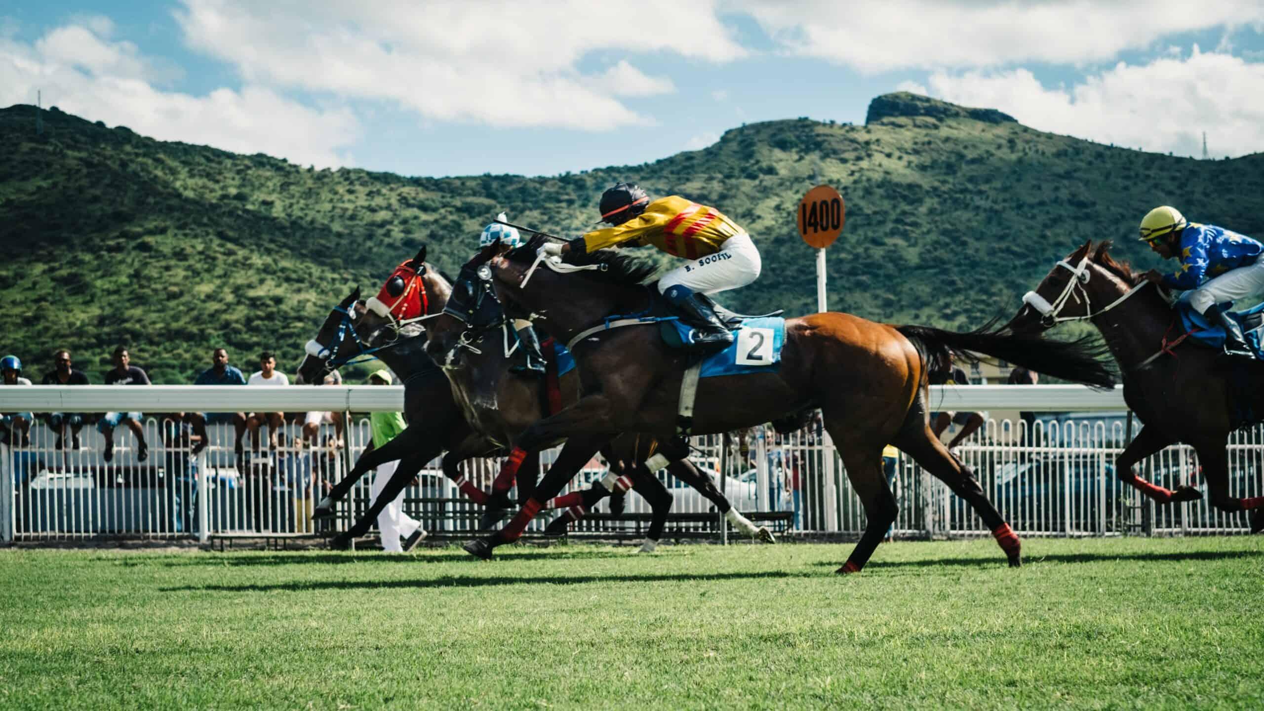 Digital Marketing For Racecoures