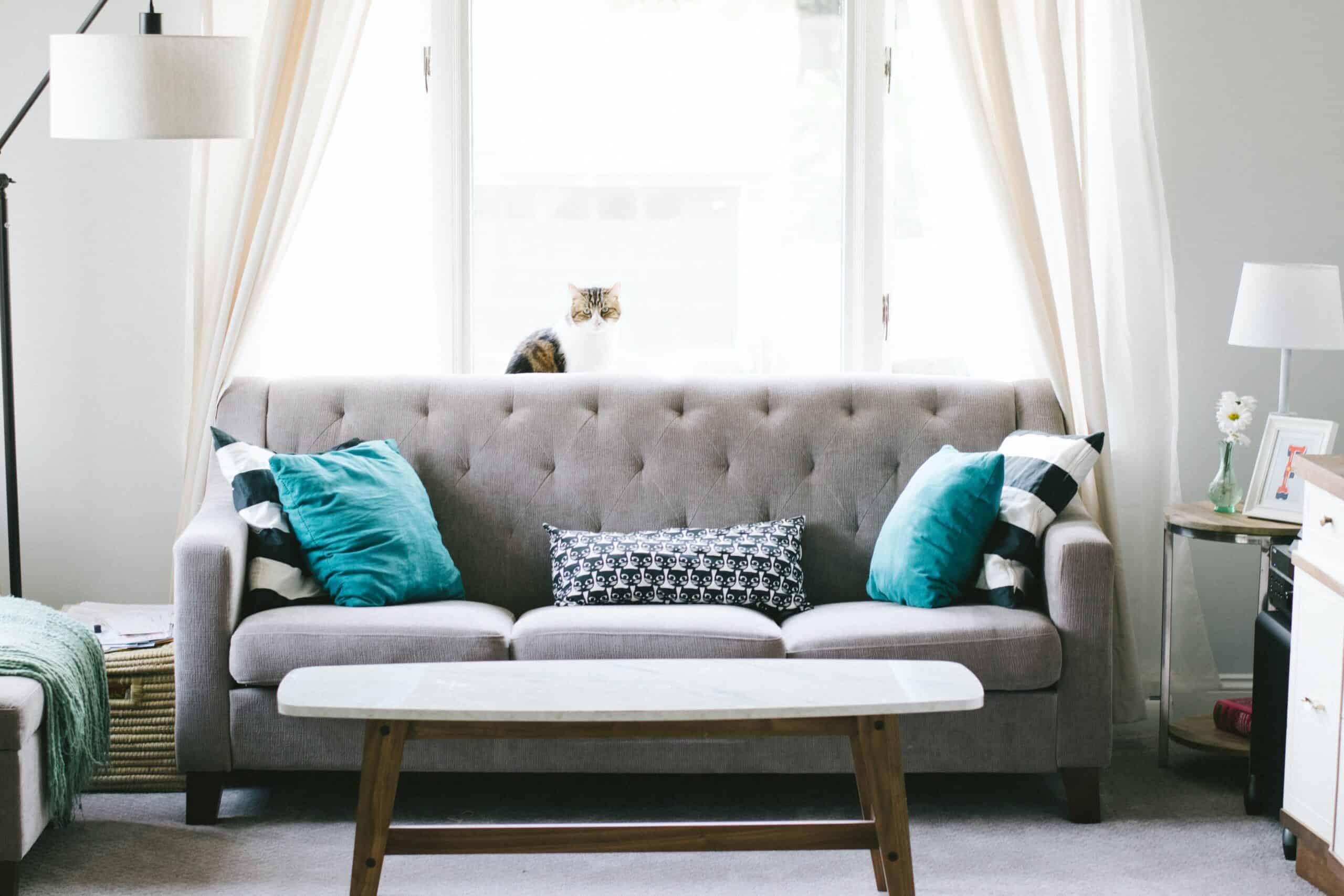 digital marketing for Furniture Repair Services