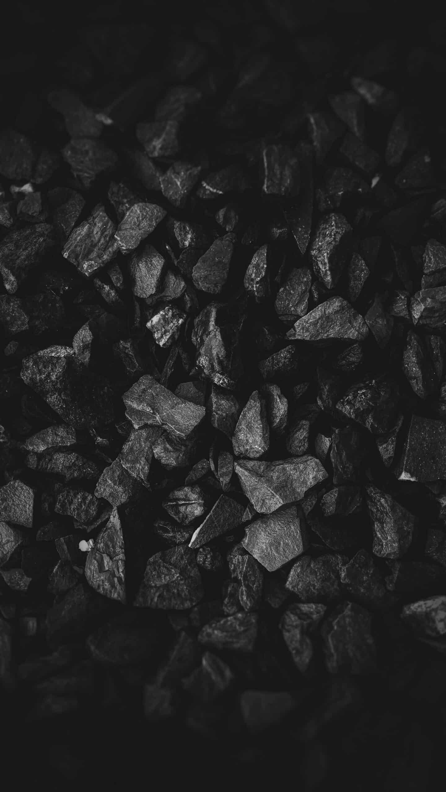 digital marketing for Coal suppliers